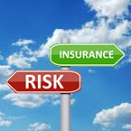 What is Additional Insured?